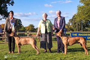 Best in Show Priorpark Aphrodite JW Reserve Best in Show Zenzele's Chase The Ace